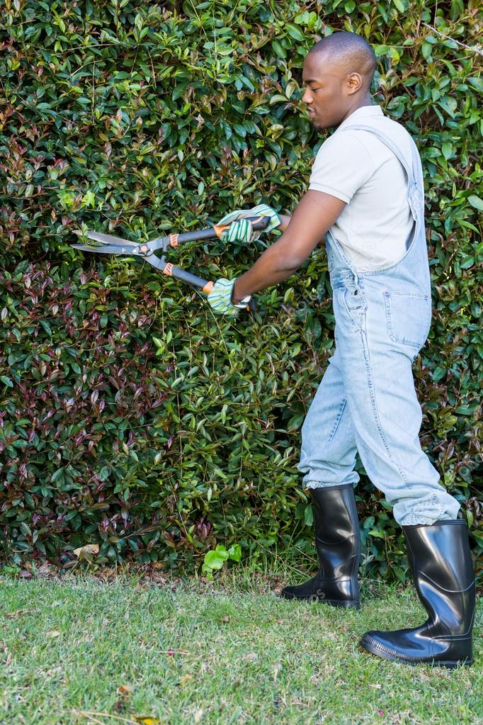 depositphotos_106116738-stock-photo-man-cutting-hedge-with-garden