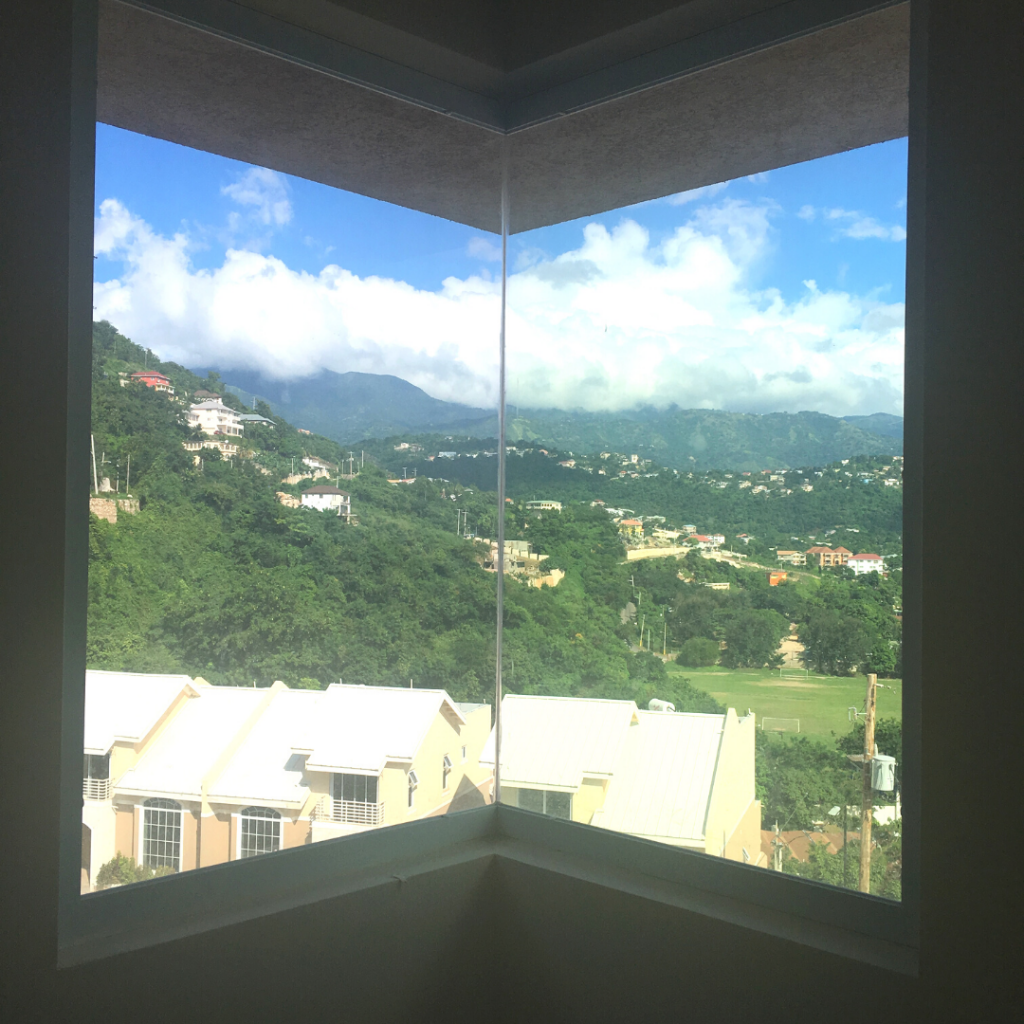 Forest Ridge Window View